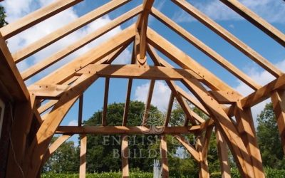 The Environment and Timber Frames